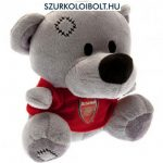F.C. Arsenal Bear