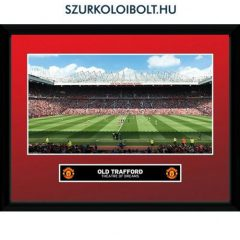 Manchester United FC wall Picture - official merchandise