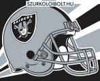 - Oakland Raiders pin