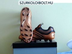 Reebok Prime Rage Evo 15 (M) bronz