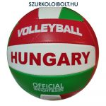 Puma Beach Volleyball