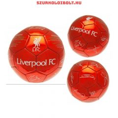 """Liverpool FC """"Signature"""" football - normal (size 5) Liverpool football with the team members s"""