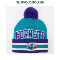 Charlotte Hornets Beanie Hat in team colors
